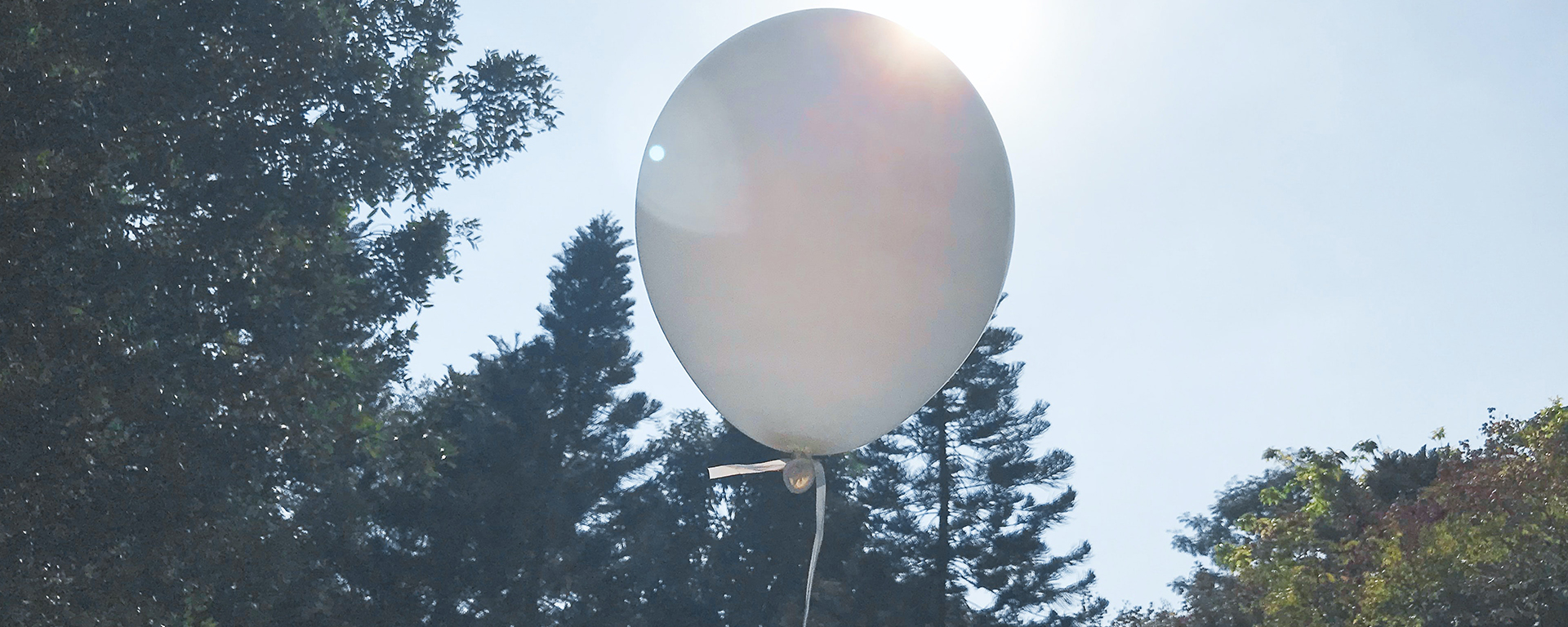 Balloon floating with trees in background