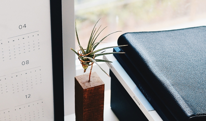 A calendar on a desk with a journal and plant